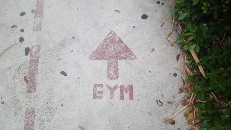 Un gym pour ton cerveau?